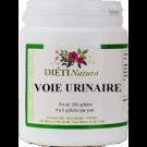 voie_urinaire_1